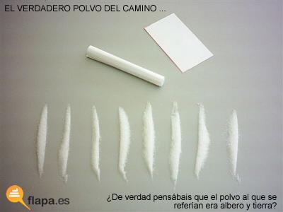 Polvo_del_camino
