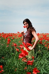 Poppy Field (Gatis Orlickis) Tags: red woman film 35mm poppy poppyfield campodeamapolas snoupy ponka
