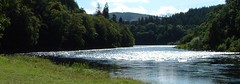 The Tay (tracey_fullerton) Tags: dunkeld