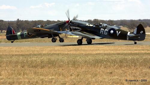 Spitfire!