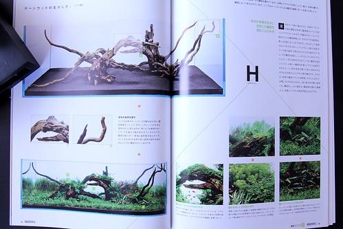 Aqua Journal vol. 175