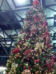 2008_11_28_k02 - Christmas Tree