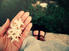 It's the stories they told us when we were younger about life and love. (englishsnow) Tags: life flowers summer people white love grass youth spring hands dress bokeh young teen indie stories simple whimsical feb25