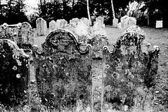 Old Stones (Quiet Corners) Tags: trees bw film church graveyard 35mm countryside nikon hand sink walk graves stnicholas hp5 manual developed ilford newforest brockenhurst fe2 id11 blackwhitephotos