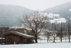 Schlitters-Bruck chicken shed (Beardymonsta) Tags: trees winter snow mountains chickens rural landscape austria day cloudy shed pastoral zillertal schlitters pwwinter