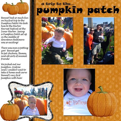0810 Pumpkin Patch