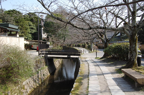The Philosopher's Walk in Kyoto(哲学の道)