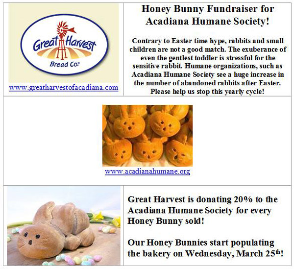 Honey Bunny Fundraiser by MyCatRanch