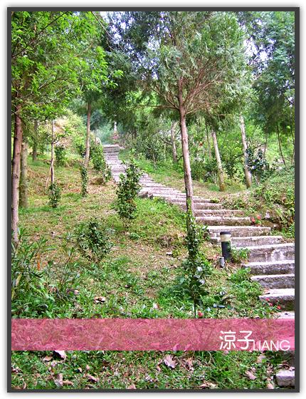桃李河畔19
