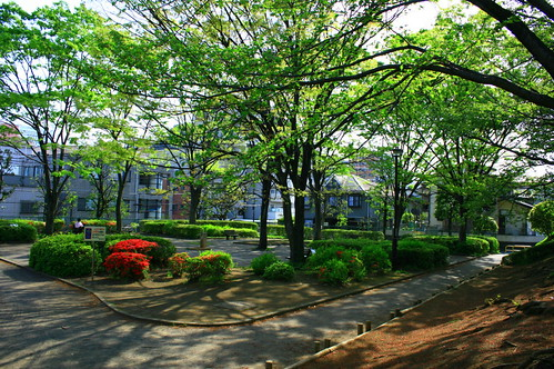 町田樹 画像2