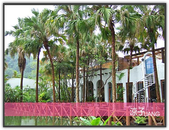 泓品 三義 棕櫚泉22
