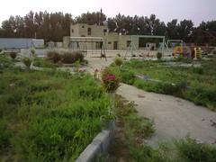 صورة0038 (lateefkuwait) Tags: في تاريخ المزرعة 452009