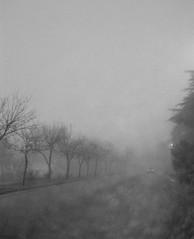 Donde te fuiste? (Los del Tala) Tags: lluvia terrible horrible neblina da niebla blackdiamond humedo llovizna blueribbonwinner supershot blackwhitephotos bej abigfave platinumphoto blackwhiteaward goldstaraward paraquedarseenlacatrera