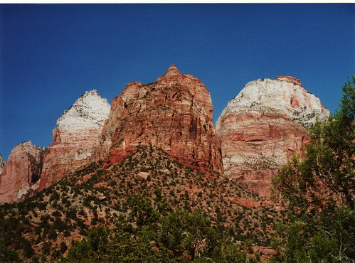 Red cliffs of Zion National Park