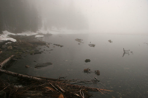 Foggy Lake 22