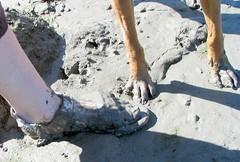 Quicksand! (Turtblu) Tags: pie mud hound canoe canoeing coonhound quicksand