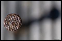 ClaVo (Enrique Mesa) Tags: macro desenfoque abstracto theunforgettablepictures platinumheartaward mcobj