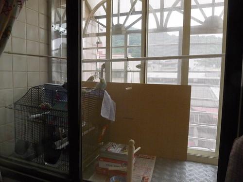 房間小陽台改裝成鳥籠