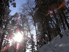 冬の青空 -羽黒山-