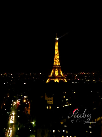 Eiffel tower_03_night view