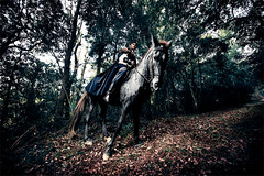 Mordred 02 (Ibai Acevedo) Tags: light portrait horse color luz night forest caballo noche camino capa son medieval revenge bosque legend arturo hijo caballero venganza leyenda mordred artrica alassie maitegutierrezgarrido boscdelssomnis
