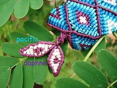 Macrame de Tijamuchi // Cierre (pacificdaphne) Tags: handmade bolivia bracelet macrame pulsera makrame artesania tejido hiloencerado macram