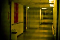 The Shining (richard.pyrker) Tags: utrecht corridor dormitory beneluxlaan