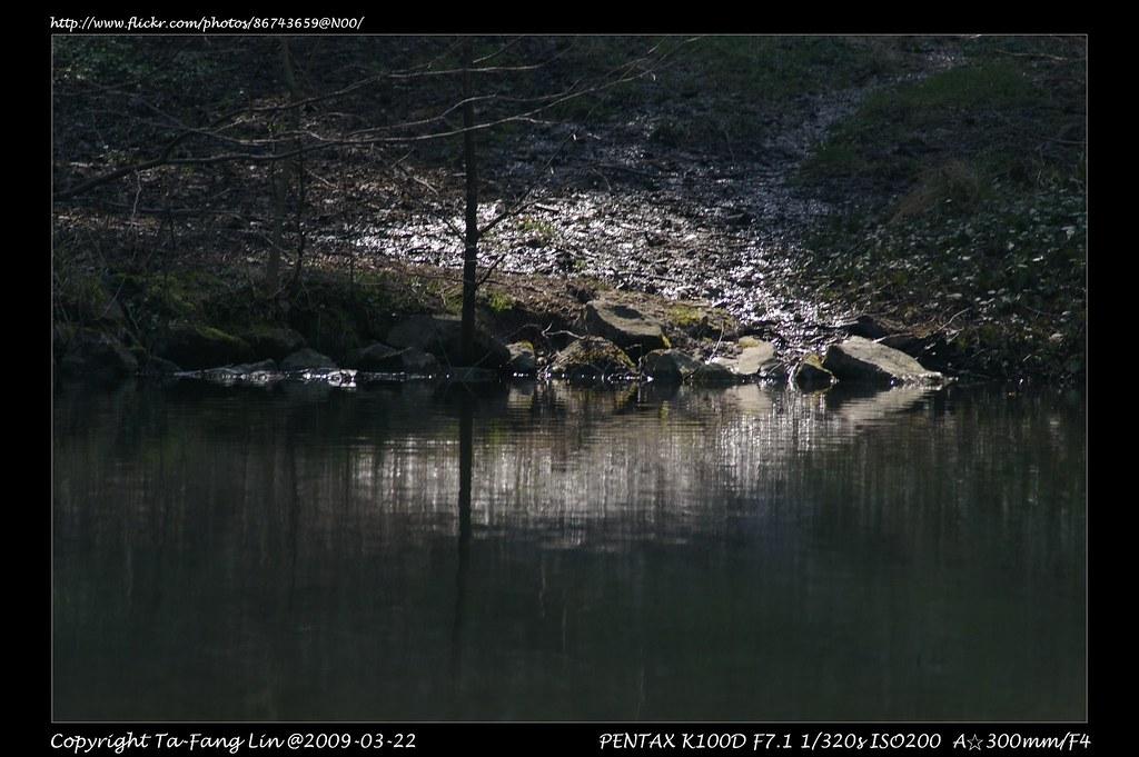 smc PENTAX-A☆ 1:4 300mm