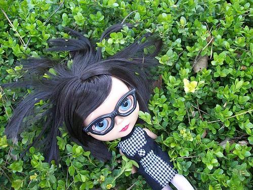 Prima Dolly Ebony (PD2E) // RBL 3379307271_57e9961fd4
