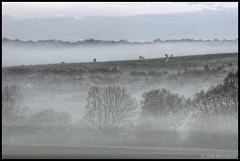 Mornixuur II (Mornix.nl) Tags: york morning mist dawn nikon cows ww1 hdr chatel d300 mornixuur