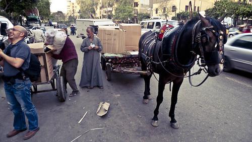 P1030529_egypt_cairo