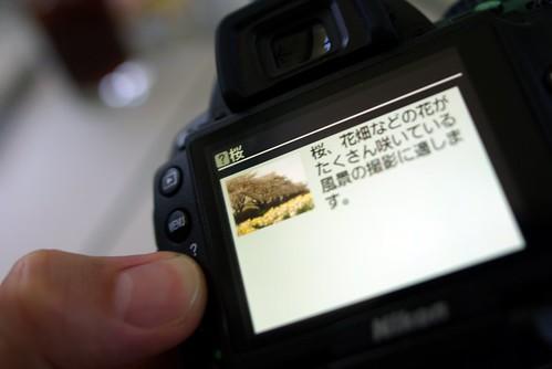 D5000 Sakura mode