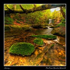 Plas Power Woods & Waterfall (Antony....) Tags: geotagged waterfall moss spring rocks stream cymru explore zuiko hdr hdri wrexham photomatix plaspower aplusphoto geo:lat=53040594 geo:lon=3055229 918mmm welliesoninthewater