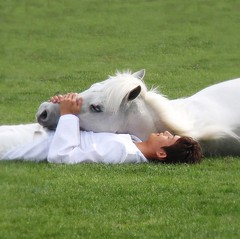Relaxing (tanakawho) Tags: people horse white man green eye grass square nose hand lawn relaxing ear lying mane horsewhisperer  instantfave winnerflickrsweeklythemecontest karmapotd tanakawho