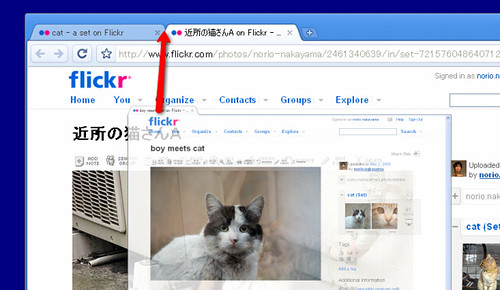 Google Chrome window 3