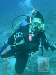Fahad Alyazidy Dive in the Sea of Jeddah KSA Red Sea (Fahad Alyazidy) Tags: red sea dive jeddah fahad ksa alyazidy