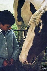 I'm Worth up to 99p (theirhistory) Tags: boy horse field grass shirt cheval kid child eating tie manger enfant cardigan herbe garon domaine chemise philiphoward attacher philliphoward