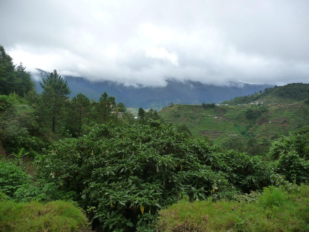 Route-Sagada-Baguio (49)