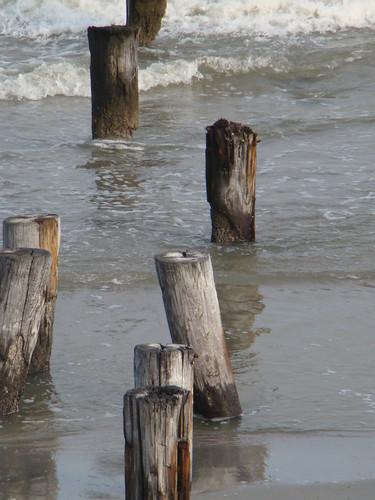 Beach_09 071