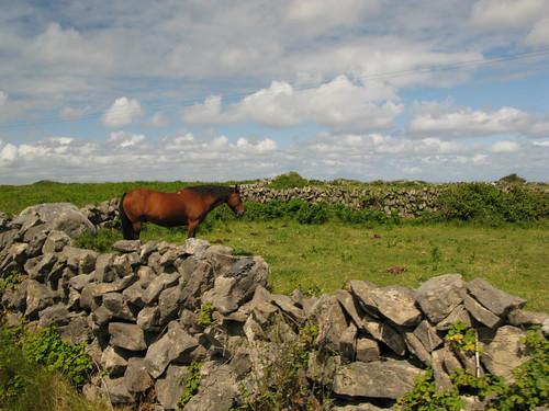 Inishmore, Aran Islands