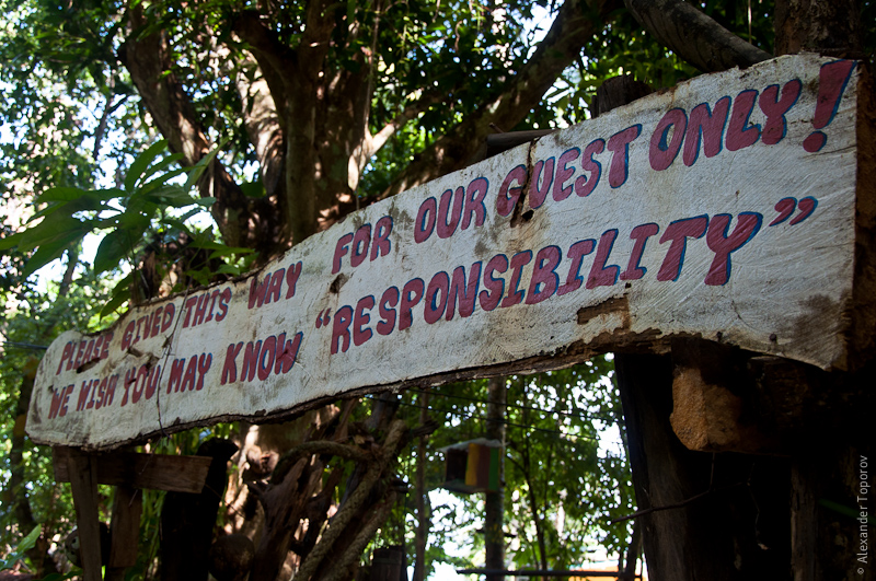 "We Wish You Know ""Responsibility"""