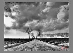 Infrared (fabrymondino photography) Tags: alberi photoshop nikon nuvole piemonte tamron hdr d300 cs3 photomatix 1750mm viewnx