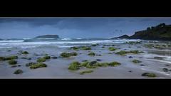 Fingal Head - Azzuro view (Garry - www.visionandimagination.com) Tags: ocean blue sea green birds island moss rocks surf waves pano scenic australia soe azzuro fingalhead bej platinumphoto theperfectphotographer rubyphotographer wwwvisionandimaginationcom