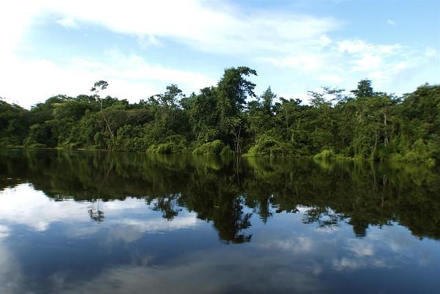 Vista del río Tahuayo en el camino hacia El Chino. Iquitos, Perú.