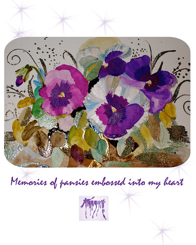 pansies-memories-of-pansies