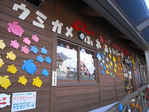 ウミガメふれあいパーク@三重県紀宝町-03