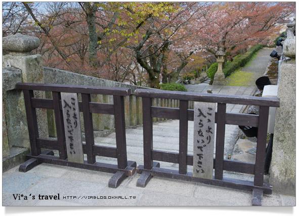 【京都春櫻旅】京都旅遊景點必訪~京都清水寺之美京都清水寺11