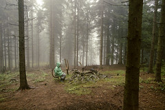 Poland 15 (marek.wykowski) Tags: wood trees woman cold nature wet rain misty fog mystery forest dark twilight fireplace solitude escape spooky adventure mysterious discovery protection individuality