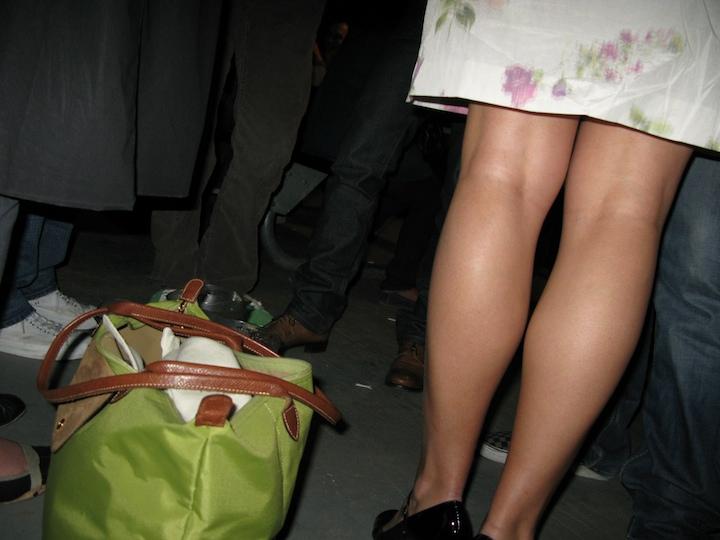3461671118 d1de40bd1b o shes got legs