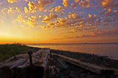 Sunrise over the forth (Stuart Stevenson) Tags: wood light sea colour beach water sunrise canon scotland rocks canon300d fife stones north earlymorning pebbles stuart forth lowangle stuartstevenson fluffycoulds stuartstevenson